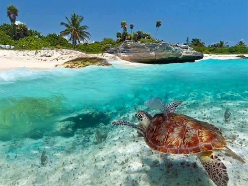 Putovanje Zanzibar Nova Godina