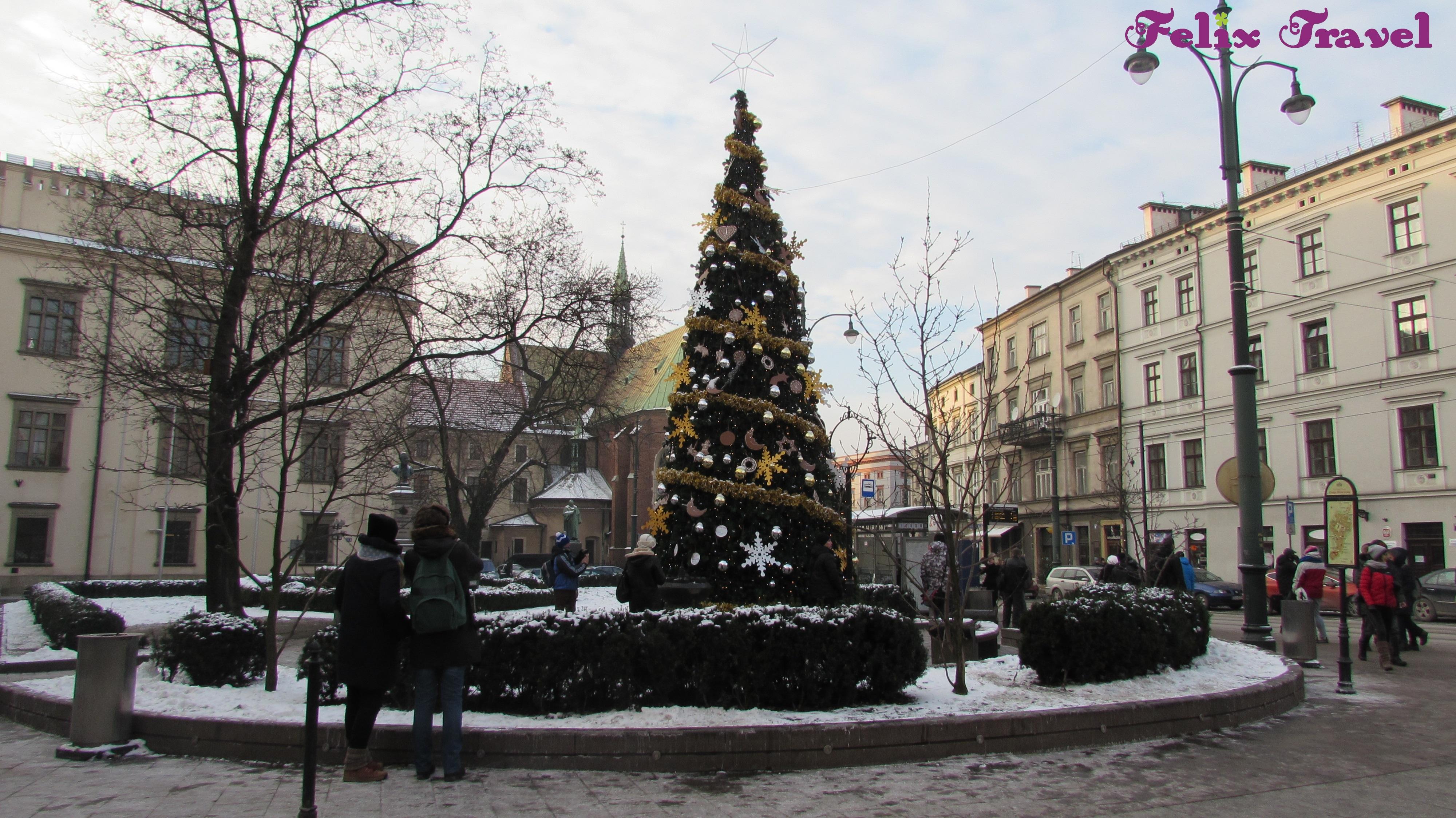 Prvi Maj Krakov 2019