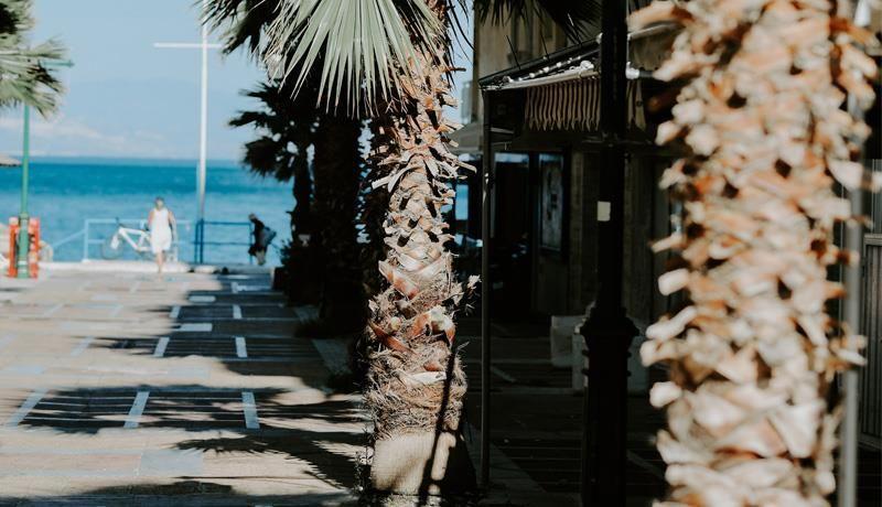 Hotel Mantas Palma