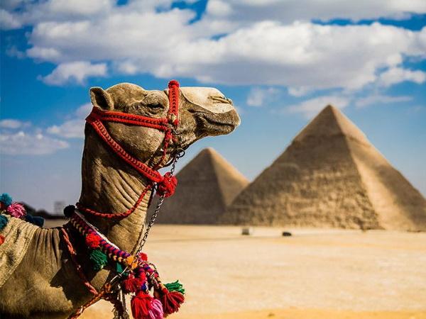 Letovanje Egipat 2020