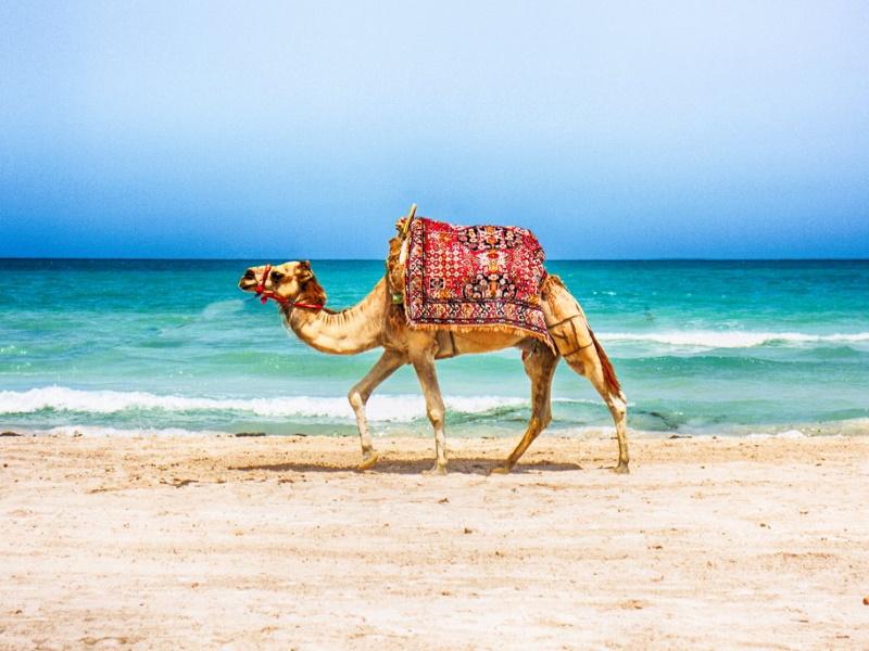 Letovanje Tunis 2020