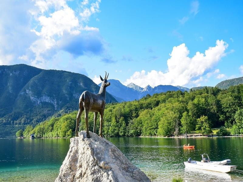 Putovanje Leto Slovenija Jezero Bohinj